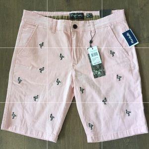 Preppy men's flamingo shorts, 34